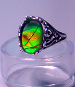 Ring Jewelry - Ammolite and Sterling Filigree Ring by Robin Copper