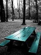 Picnic Table Framed Prints - Amongst Old Friends Framed Print by Toni Jackson
