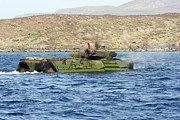 Submerge Photos - Amphibious Assault Vehicle Crewmen by Stocktrek Images