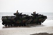 Beachhead Posters - Amphibious Assault Vehicles Land Ashore Poster by Stocktrek Images