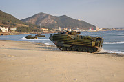 Beachhead Framed Prints - Amphibious Assault Vehicles Push Framed Print by Stocktrek Images