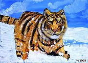 Strength Paintings - Amur Tiger by Valerie Ornstein