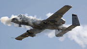 Airplane Prints - An A-10 Thunderbolt Ii Fires Its 30mm Print by Stocktrek Images