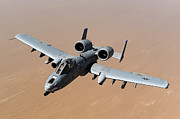 Air Force One Framed Prints - An A-10 Thunderbolt Ii Over The Skies Framed Print by Stocktrek Images