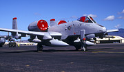 Hickam Photos - An A-10 Thunderbolt Ii Parked by Michael Wood