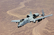 Gunship Prints - An A-10 Thunderbolt Soars Print by Stocktrek Images