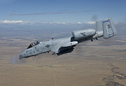 Avenger Framed Prints - An A-10c Thunderbolt Fires Its 30mm Framed Print by HIGH-G Productions