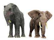 Two By Two Digital Art Posters - An Adult Deinotherium Compared Poster by Walter Myers
