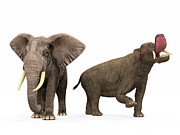 Two By Two Digital Art Posters - An Adult Platybelodon Compared Poster by Walter Myers