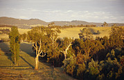 Yarra Valley Prints - An Aerial View Of Idyllic Farmland Print by Jason Edwards