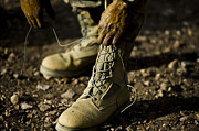 Tying Shoe Photo Posters - An Air Force Basic Military Training Poster by Stocktrek Images