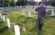 National Cemetery Prints - An Airman Renders Honors After Placing Print by Stocktrek Images