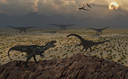 Saurischia Posters - An Allosaurus Dinosaur Spies A Group Poster by Mark Stevenson