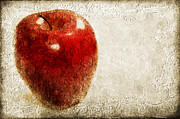 Stem Mixed Media Prints - An Apple A Day Print by Andee Photography