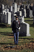 Headstones Prints - An Army Soldier Stands In The Cypress Print by Stocktrek Images