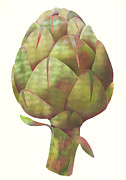 Healthy Eating Digital Art - An Artichoke by Aya Naito