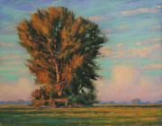 Woodland Pastels Originals - An August Memory by Joe Mancuso