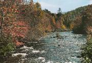 River Scenes Photos - An Autumn Scene Along Little River by J. Baylor Roberts