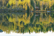 Log Cabins Prints - An Autumn View Of A Cabin Reflected Print by Rich Reid