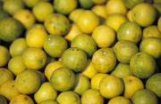 Local Food Photo Prints - An Enticing Display Of Lemons Print by Jason Edwards
