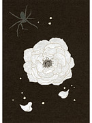 Spider Flower Framed Prints - An Illustration Of A White Flower And Spider Framed Print by Hana Asami