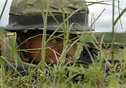Hiding Photos - An Infantryman With The Royal Thai by Stocktrek Images