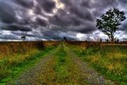 Kim Mixed Media - An Irish Road by Kim Shatwell-Irishphotographer
