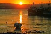 Martina Fagan - An October Sunset