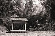 Tropical Photographs Photos - An Old Gazebo by Mario Bennet