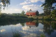 Agricultural Structures Posters - An Old Red Barn Reflected In A Pond Poster by Richard Nowitz