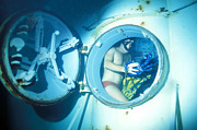 Swimsuit Photography Prints - An Underwater Demoltion Team Print by Michael Wood