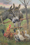 Donkey Painting Metal Prints - An Urban Council  Metal Print by Herbert William Weekes