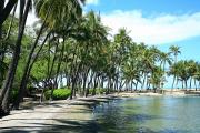 Peter French Prints - Anaehoomalu Bay fishponds Print by Peter French - Printscapes