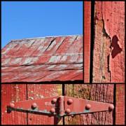 KayeCee Spain - Anatomy Of An Old Barn- Fine Art