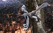 Julius Csotonyi - Anchiornis huxleyi