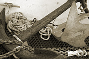 Shotwell Photography Prints - Anchors Print by Kathi Shotwell