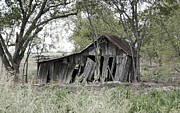 Old Country Roads Prints - Ancient Barn Print by Lisa Moore