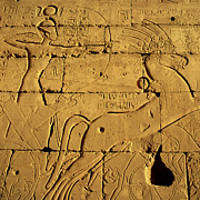 Y120907 Art - Ancient Egyptian Carving, Ramesseum Temple, Luxor by Hisham Ibrahim