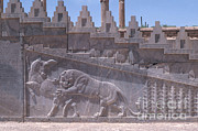 Middle Eastern Art Framed Prints - Ancient Persepolis Ruins Framed Print by Photo Researchers, Inc.
