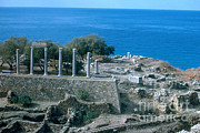 Roman Ruins Metal Prints - Ancient Ruins, Lebanon Metal Print by Photo Researchers, Inc.