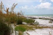 Beach Scenes Photo Originals - Anclote Key Preserve by Barbara Bowen