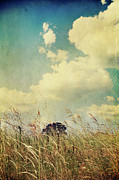Field. Cloud Metal Prints - And The Livins Easy Metal Print by Laurie Search