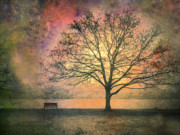 Fantasy Tree Art Prints - And the Morning is Perfect in all Her Measured Wrinkles Print by Tara Turner