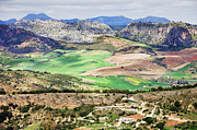 Andalucia Metal Prints - Andalucia Countryside Metal Print by Artur Bogacki