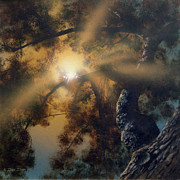 Astronomy Painting Posters - Andis Oak Poster by Don Dixon