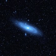 Stellar Photos - Andromeda Galaxys Older Stellar by Stocktrek Images