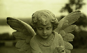Toy Shop Photos - Angel 7 by Doug  Duffey