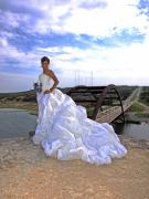 360 Bridge Prints - Angel Bridal I Print by James Granberry