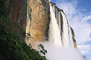 Angel Falls Posters - Angel Falls, Cliffs And Trees Poster by Mark Cosslett