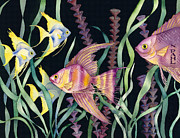 Nancy Pahl - Angel Fish Hallucination